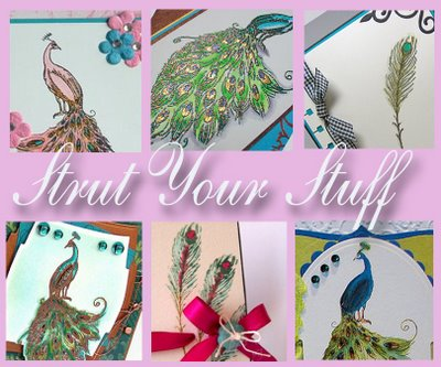 strut-your-stuff-peacock_collage_copy